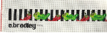 Chili Peppers Belt Needlepoint Canvas - 18 ct