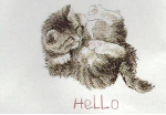Hello Kitten Cross Stitch Kit