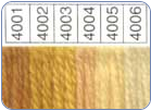 Waverly 100% Wool Yarn - 4001