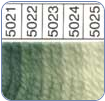 Waverly 100% Wool Yarn - 5021